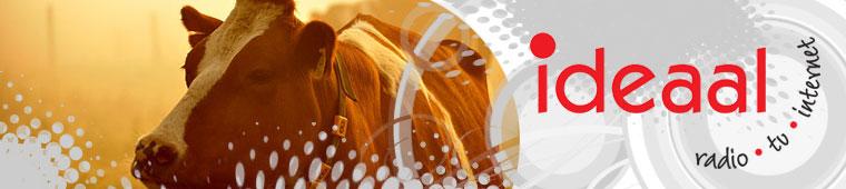 alg_2011_header11